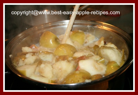 Applesauce Making Cooking on Stove