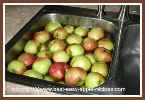 Washing Apples for Applesauce