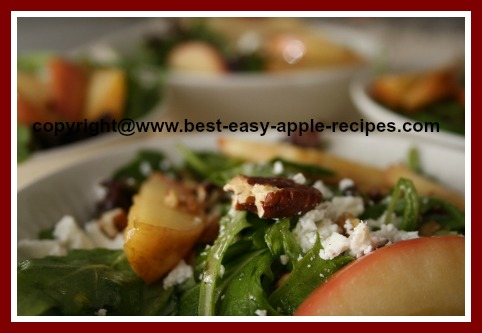 Recipe for Apple Lettuce Salad