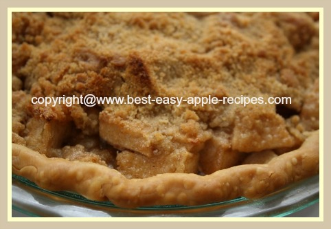 BEST Dutch Apple Pie