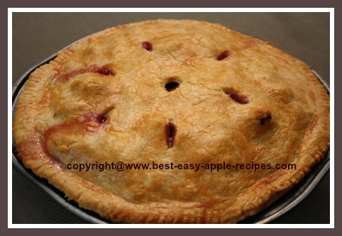 Homemade Blueberry Apple Pie Recipe