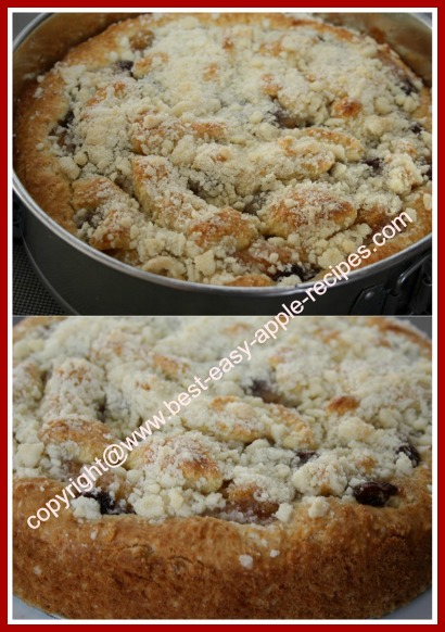 Homemade Apple Cake with Raisins