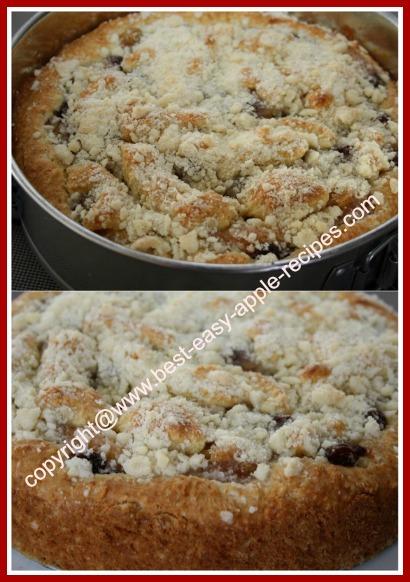 Homemade Apple Cake with Raisins