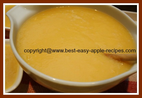 Homemade Applesauce with Peaches pureed in blender great baby food recipe