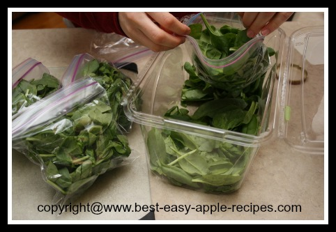 Green Smoothie Making Tips - Make Spinach Smoothies