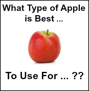 What Types of Apples are Best to Use For