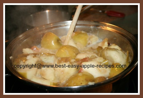 Making Applesauce Cooking Apples on Stovetop