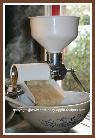 Making Applesauce with Victorio Apples Sauce Maker Machine